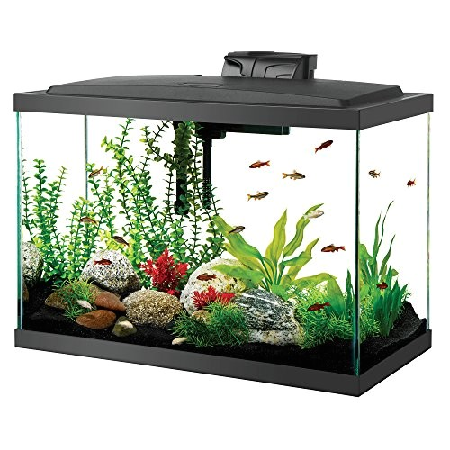 aqueon aquarium fish tank starter kit with led lighting 20 gallon