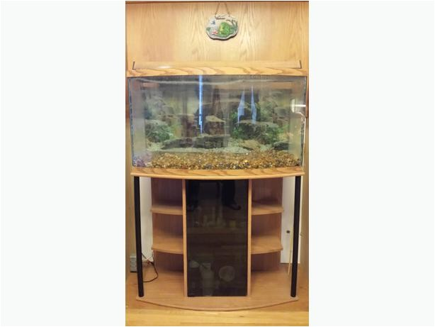 50 gallon bow front aquarium 23088214