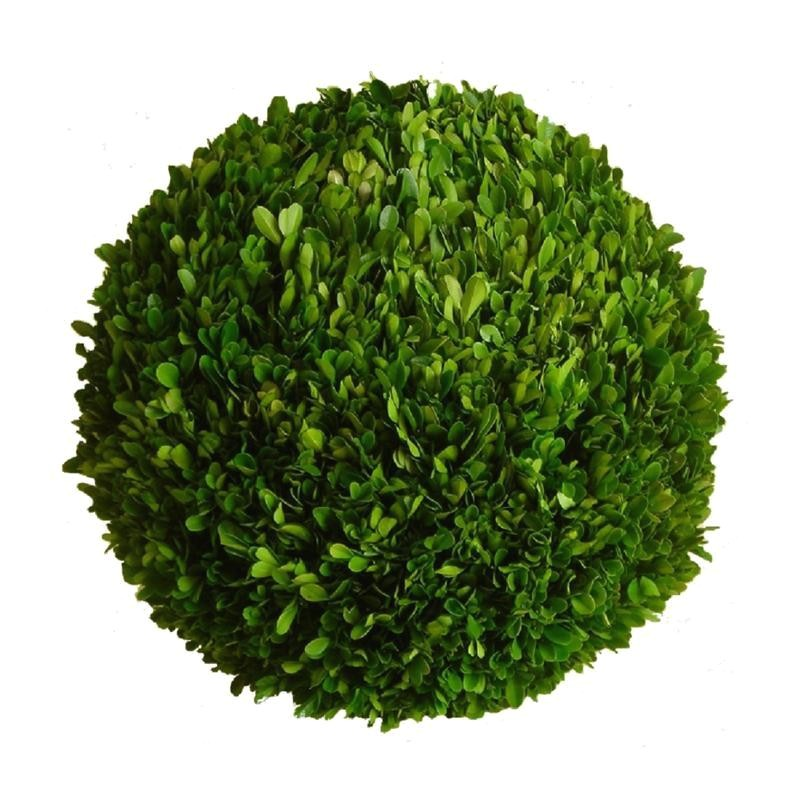 preserved boxwood ball 22 inch