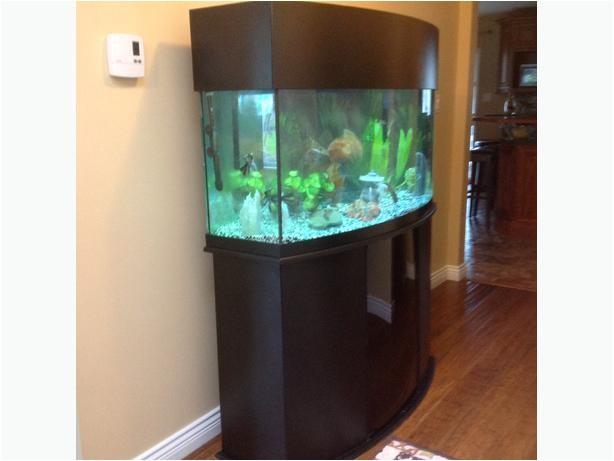 72 gallon oceanic bow front aquarium 23991372