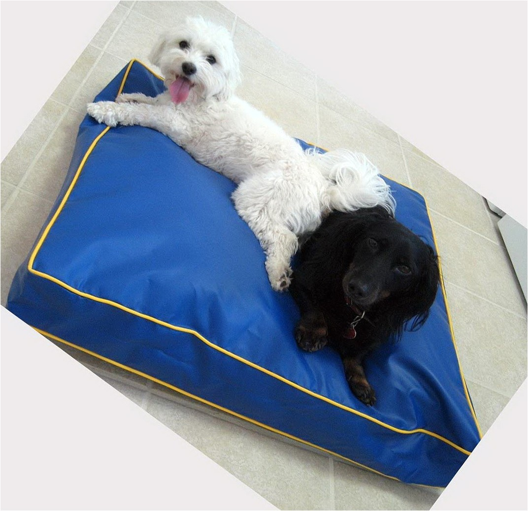 3771 chew proof dog bed material