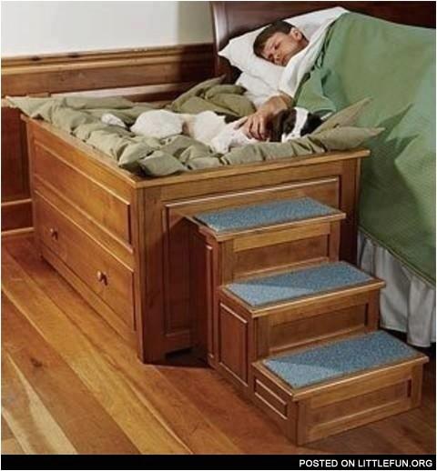 bedside platform dog bed