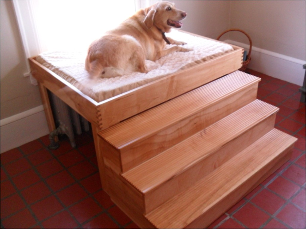 elevated dog bed plans wood