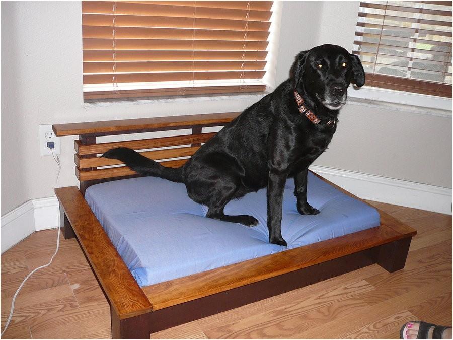 Bedside Platform Dog Bed Plans orvis Pet Beds Cvs Dog Beds Dog Beds U Gallery Dog