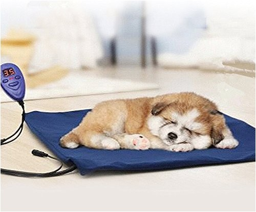 top 5 best dog bed anti chew for sale 2017