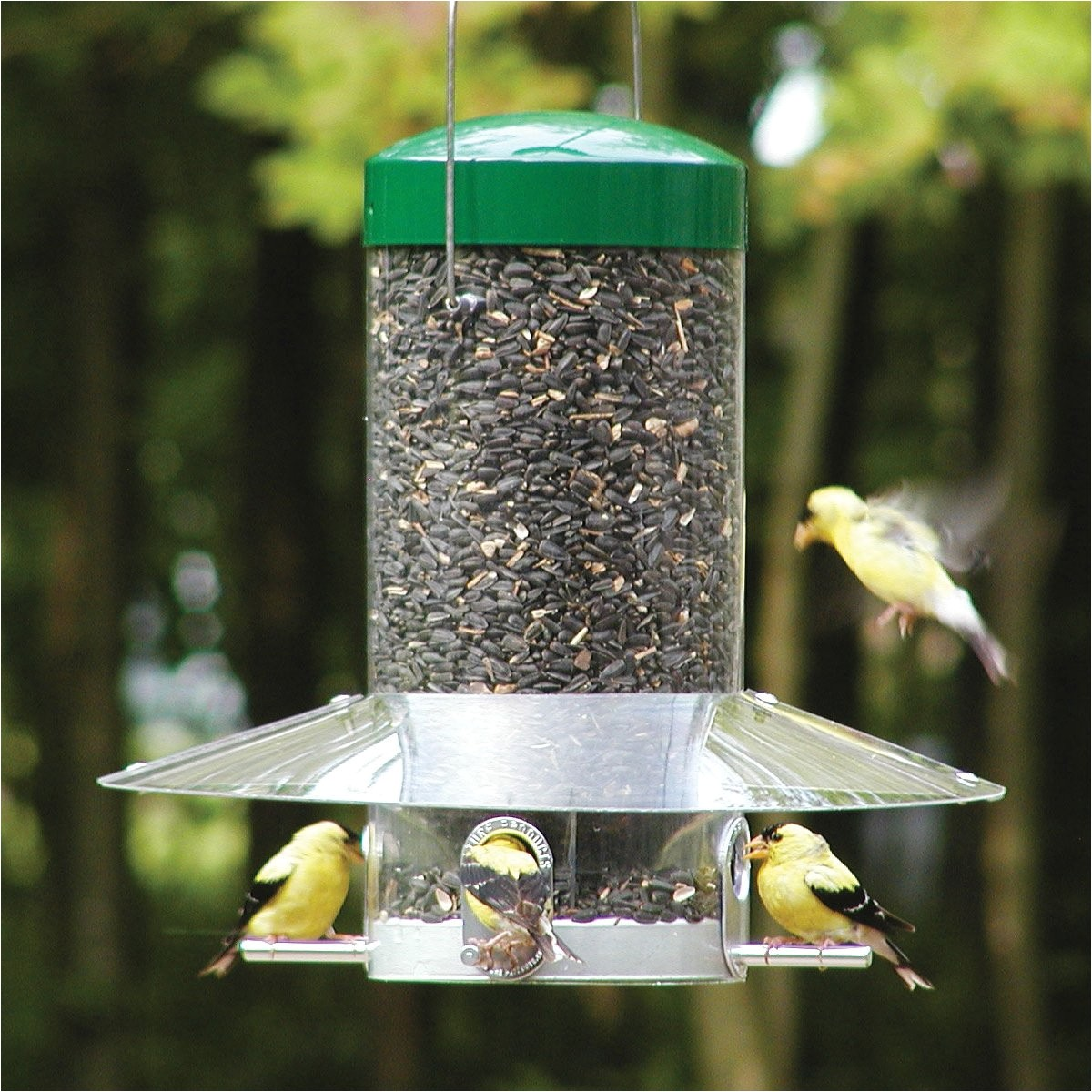 birds choice np43 classic hanging feeder g1210363