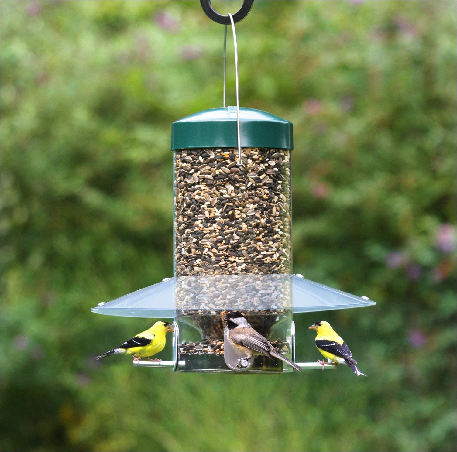 birds choice classic hanging feeder