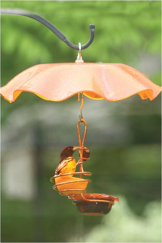 birds choice single cupsingle fruit oriole tray bird feeder brdc1166