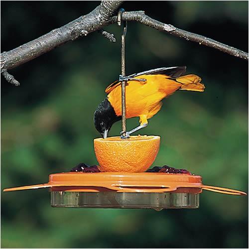 birdschoice oriole fest feeder