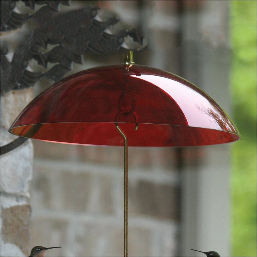 Birds Choice Red Plastic Bird Feeder Weather Guard Shop Birds Choice Red Plastic Bird Feeder Weather Guard at