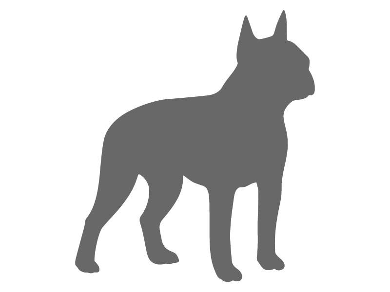boston terrier stencil