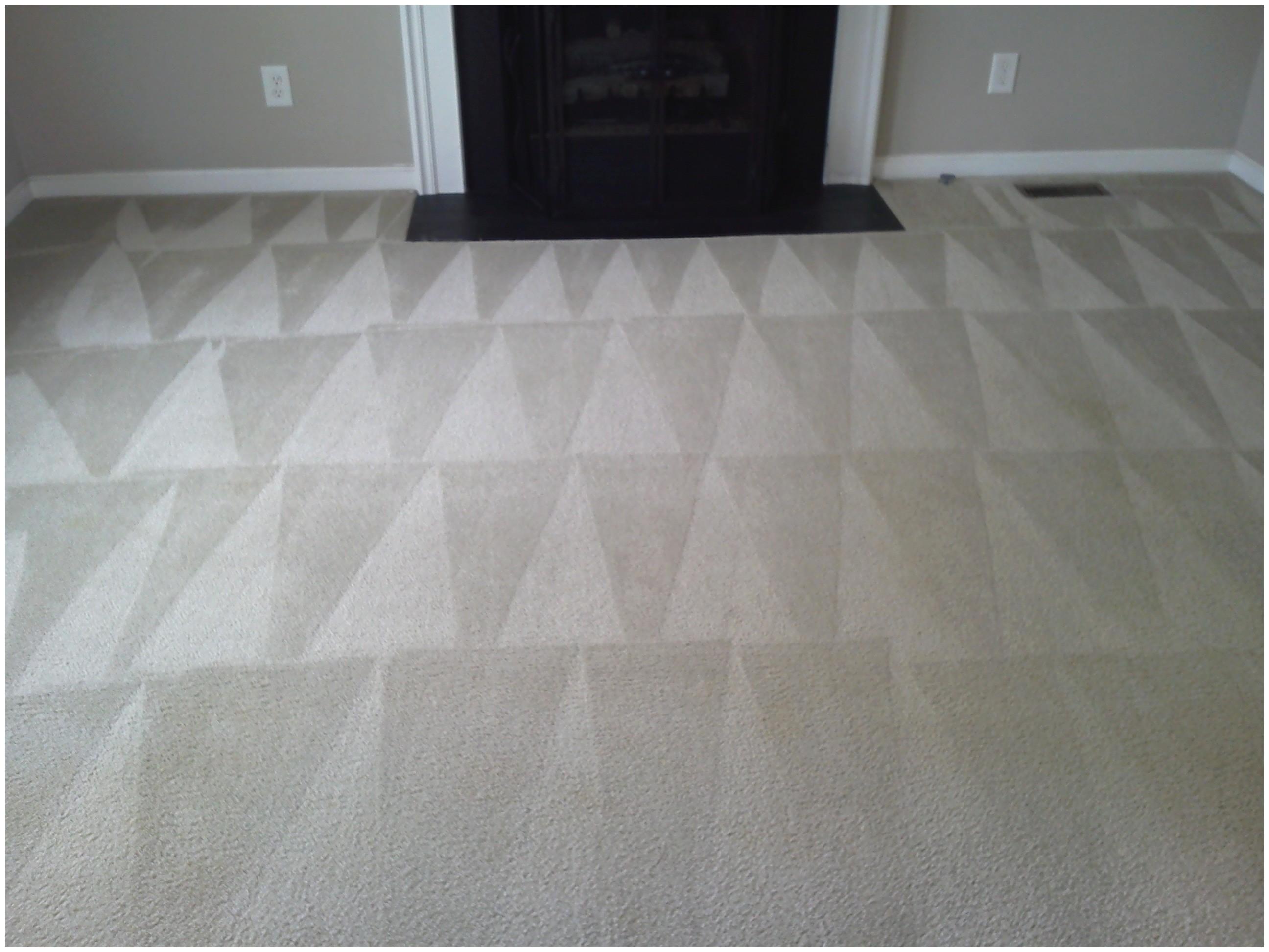 Carpet Cleaners Near Stafford Va Carpet Cleaning Stafford Virginia Carpet Vidalondon