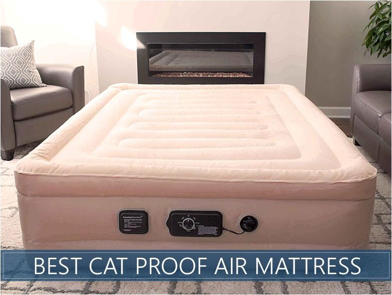 Cat Proof Air Mattress Best Cat Puncture Proof Air Mattresses Updated Reviews