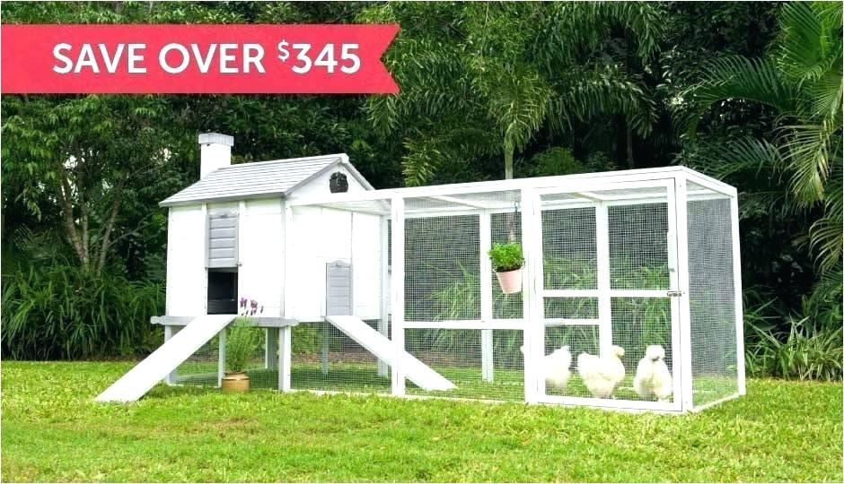 backyard chicken coop kit