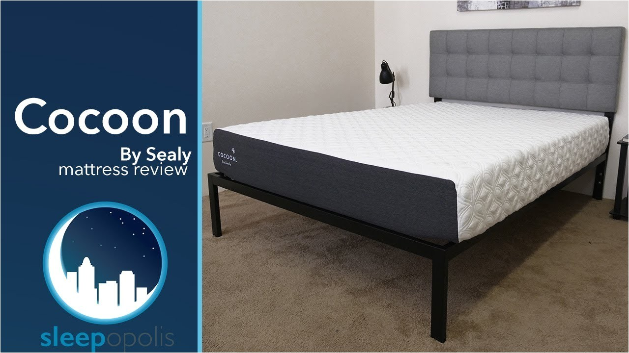 Cocoon by Sealy Reviews Sealy Cocoon Mattress Review Youtube