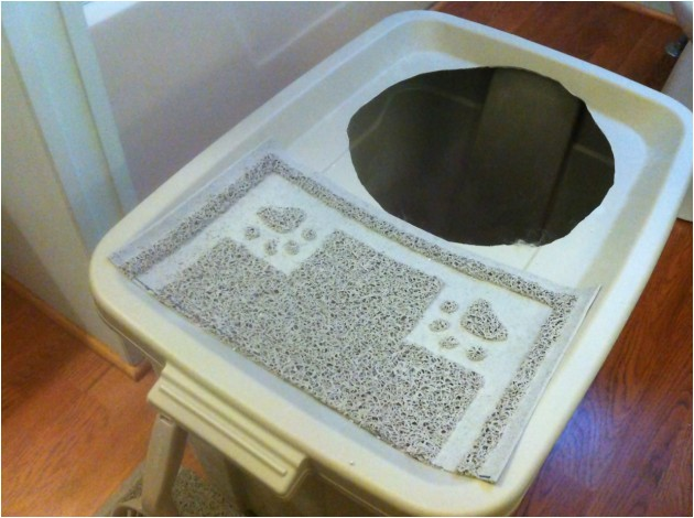 diy project make a top entry litter box