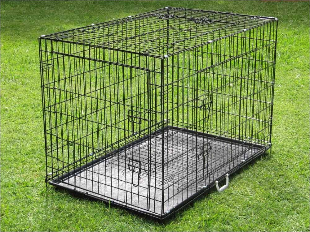 extraordinary dog crate with divider 42 inch dog crate petsmart outdoor white wall grass