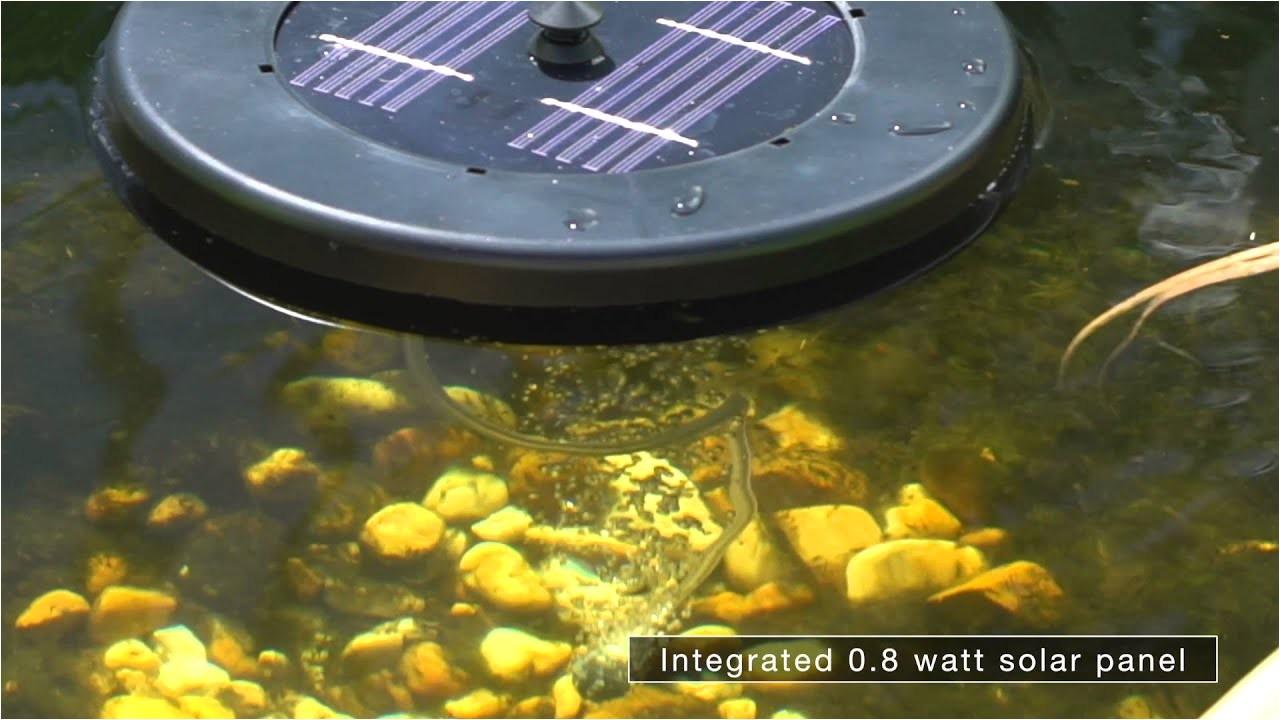 watch v z54m9vc 8yi