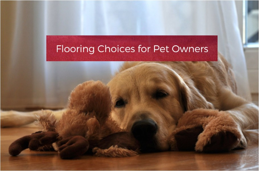 flooring choices pet owners