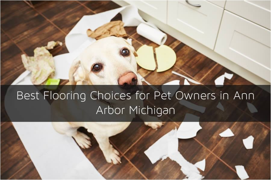 best flooring choices for pet owners in ann arbor michigan