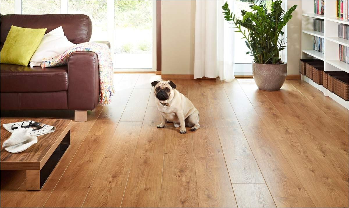 best flooring dogs house