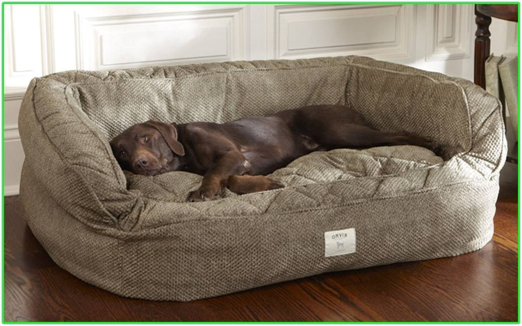 outstanding tough chew dog bed tough chew dog bed orvis tough d16eaf301d82355e