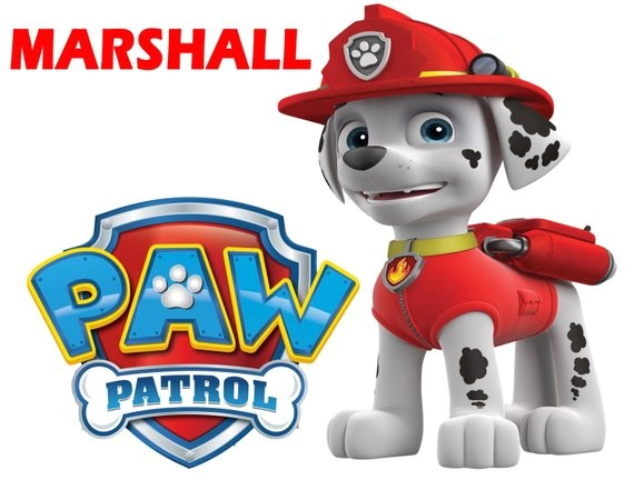 paw patrol marshall t shirt iron on