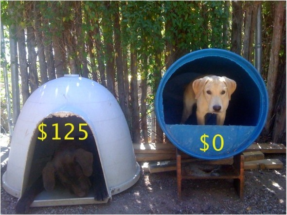 dog house idea for cheap