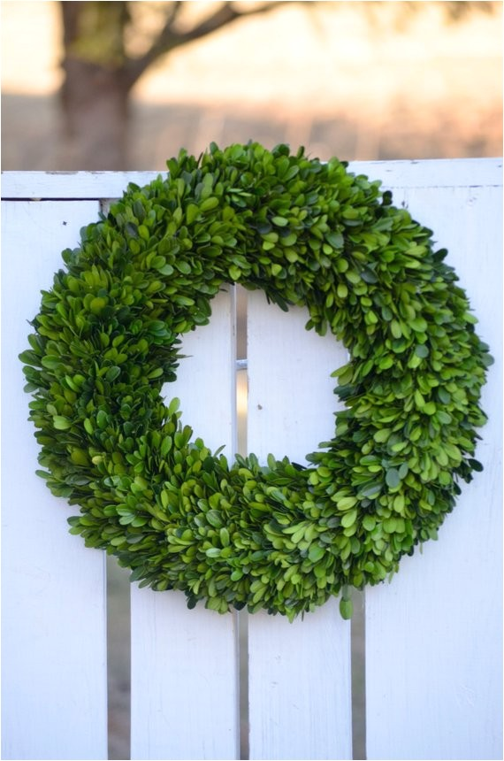 large preserved boxwood wreath spring
