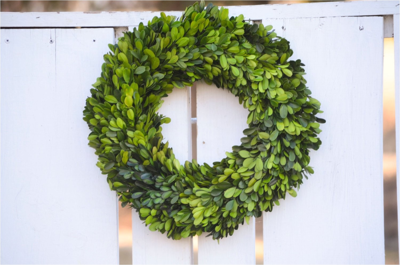 preserved boxwood wreath base wreath