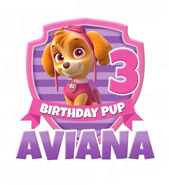 paw patrol iron on transfer for birthday shirt printable image for any name age skye pup only 1