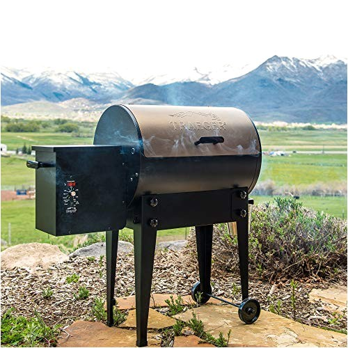 traeger renegade elite grill reviews