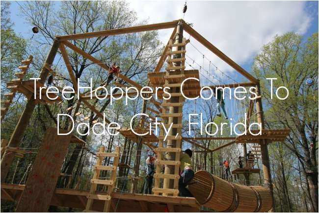 treehoppers comes to dade city florida