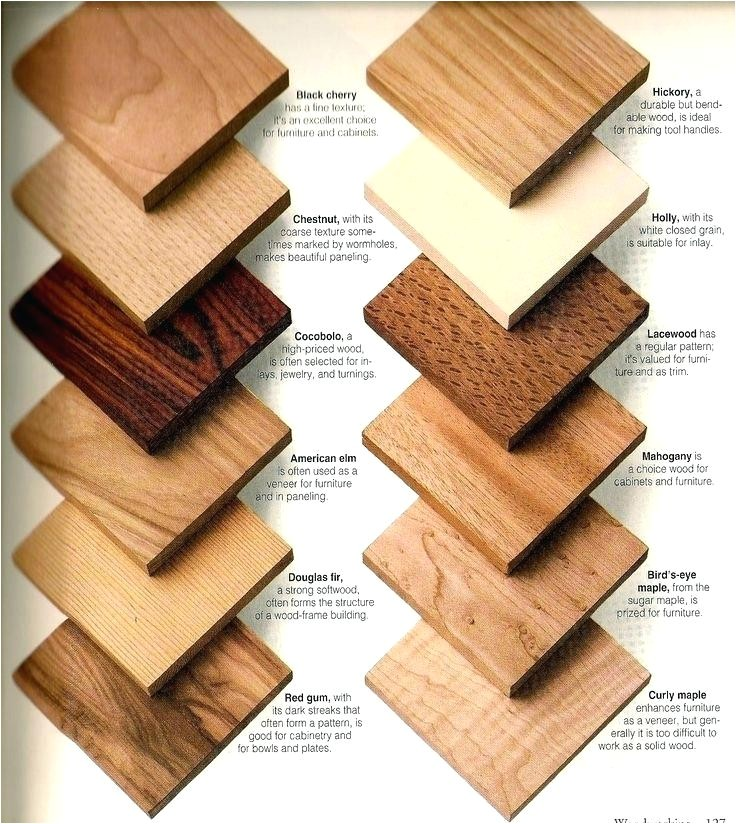 different types of wood for furniture shining ideas