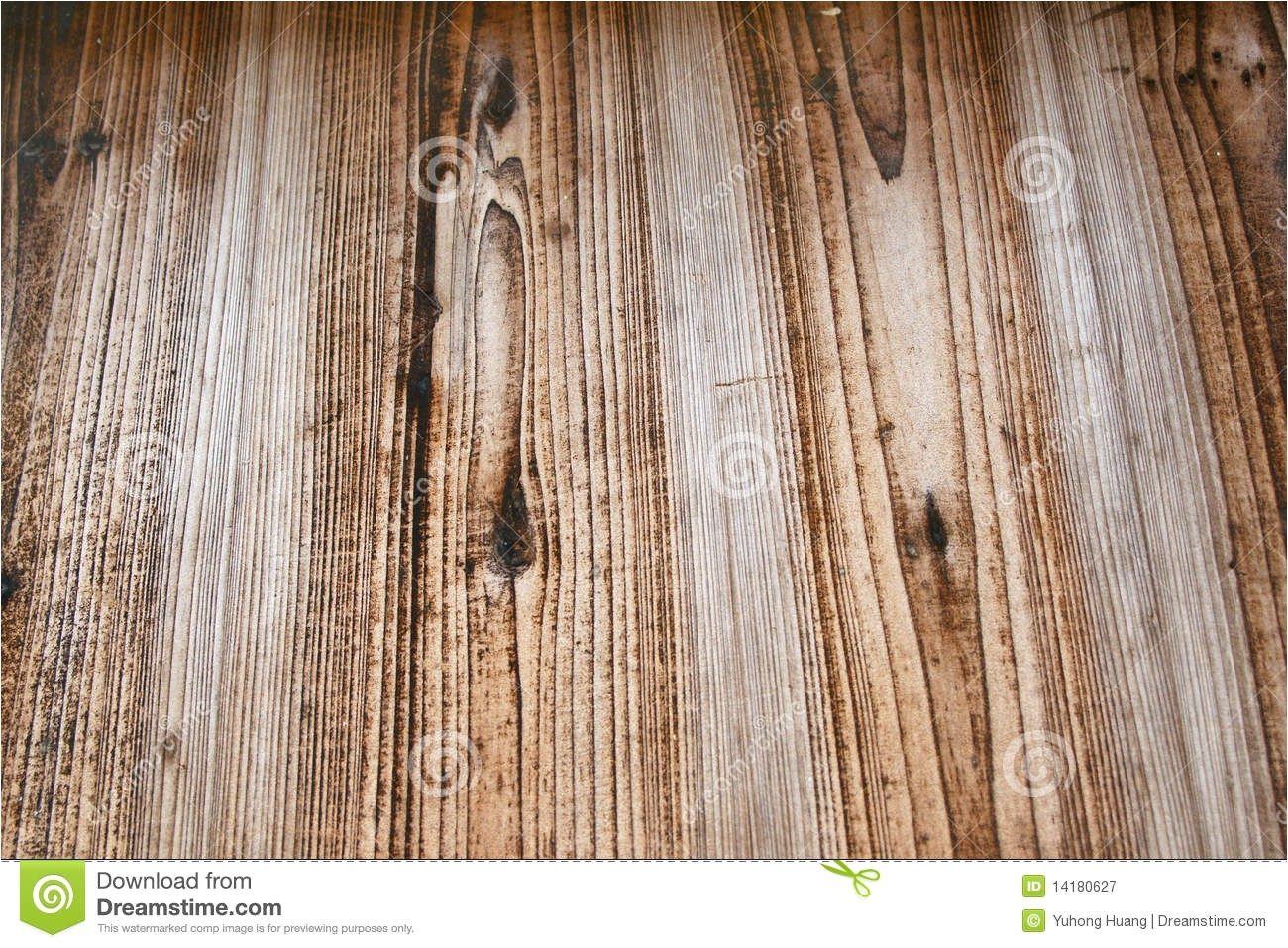 royalty free stock photography board veins image14180627
