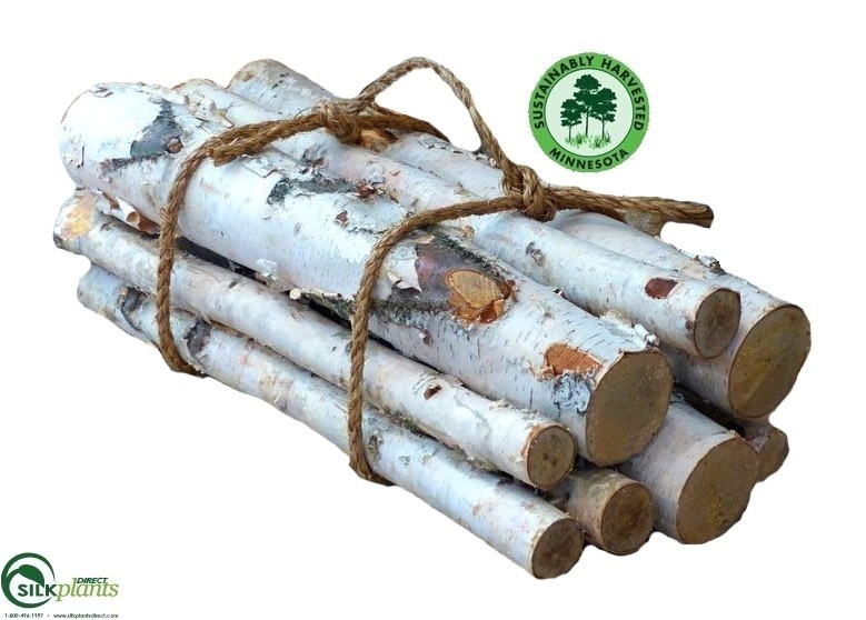 white birch gas fireplace logs