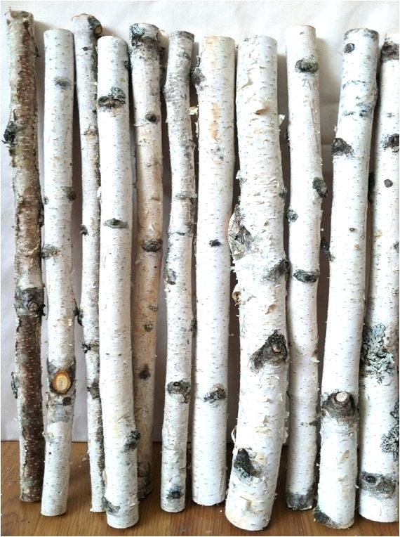 white birch wood logs decorative white birch logs birch log decor decoration for home decorative white birch logs for fireplace