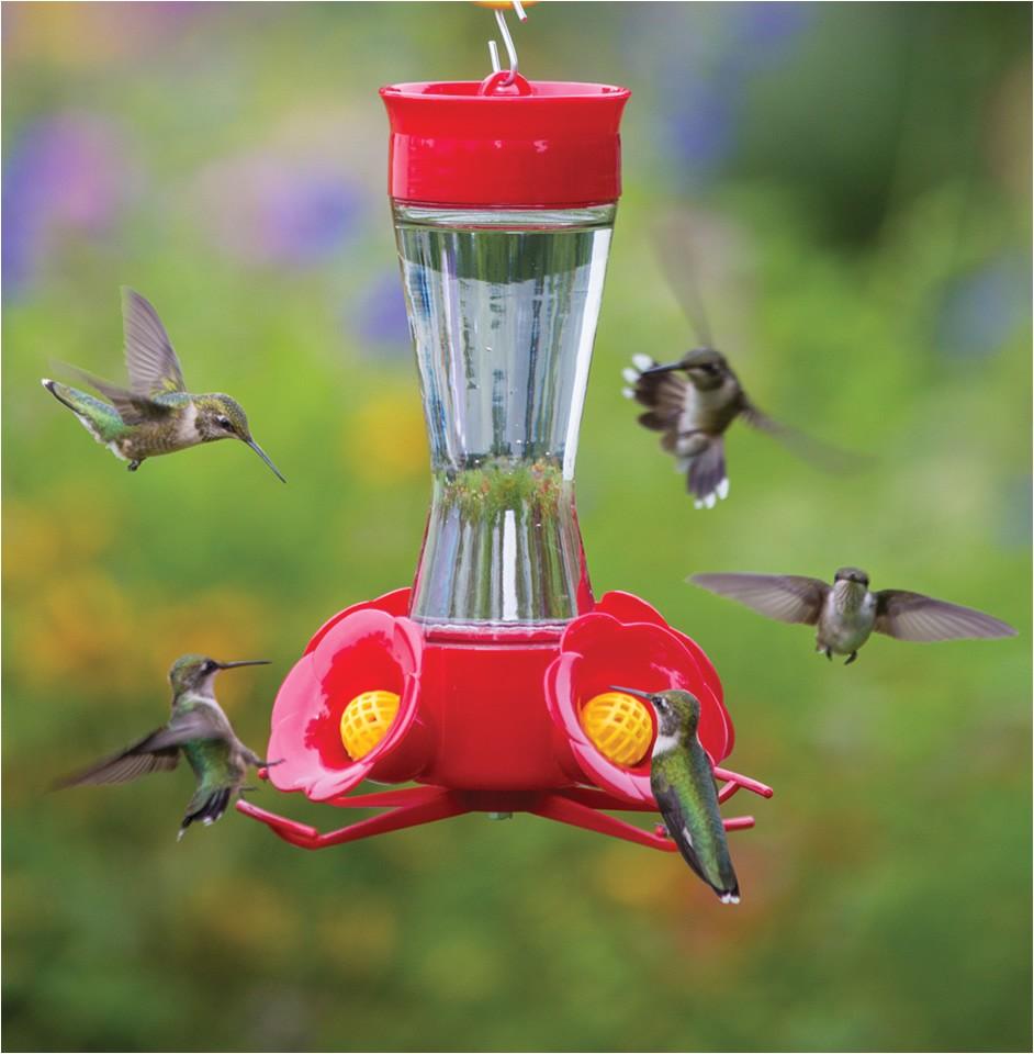 four flower frolic hummingbird feeder