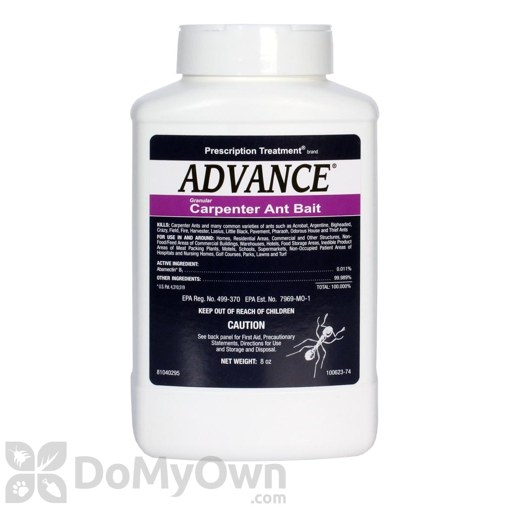 Advance Carpenter Ant Bait Home Depot Advance Carpenter Ant Bait Free Shipping Domyown Com