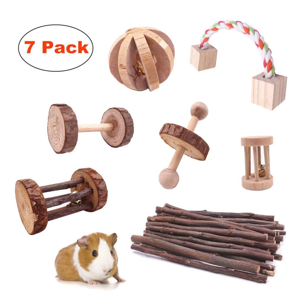 Guinea Pig Chew toys Amazon Amazon Com Guinea Pig toys Chinchilla Hamster Rat Chews toys Bunny