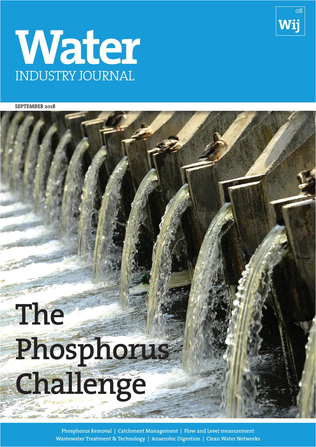 Pool Leak Detection and Repair Houston Water Industry Journal 8 by Distinctive Publishing issuu