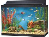 20 Gallon Fish Tank Starter Kit 20 Gallon Aquarium 50 Aqua Culture Aquarium Starter Kit