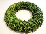 6 Inch Preserved Boxwood Wreath wholesale Garden Fresh 20 Quot Boxwood Wreath Tradingsmith