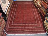 8×10 area Rugs Ikea 6 6 X 9 10 Fine Quality Khoja Roshnai Hand Knotted area Rug Home