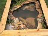 Above Ground Pond for Turtles Our New Diy Above Ground Pond for Bella the Turtle Projects to
