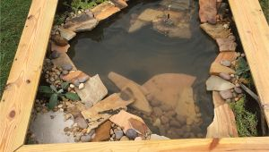 Above Ground Turtle Pond Diy Our New Diy Above Ground Pond for Bella the Turtle Ponds