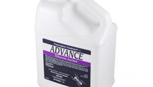 Advance Carpenter Ant Bait Buy Advance Carpenter Ant Bait 2 Lb to Get Rid Of Ants