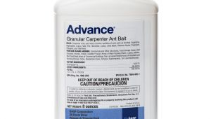 Advance Carpenter Ant Bait Msds Advance Carpenter Ant Bait Pestcontrolsupplies Com