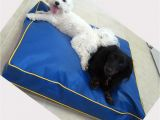 Anti Chew Dog Bed Cover Chew Proof Dog Bed Material Home Design Ideas