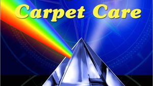 Apex Carpet Cleaning Summerville Sc Carpet Cleaning Charleston Sc Upholstery Cleaning